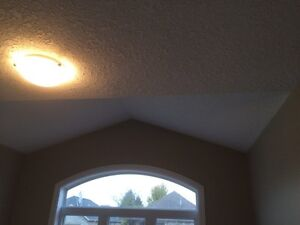 Drywall taping  Stratford Kitchener Area image 8