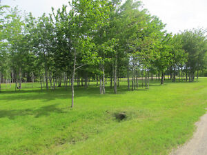 Land for sale REDUCED by $3000