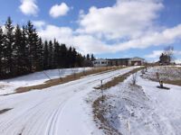 80 acres with 2000 sq ft bungalow