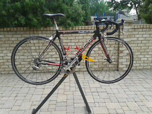 Argon 18 Carbon Bike