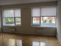 LARGE RENOVATED ONE BEDROOM