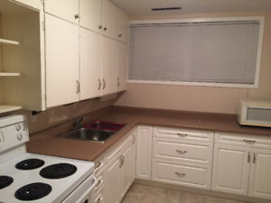 bright one bedroom bsmt suite $800