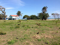 Ocean view land for sale Honduras