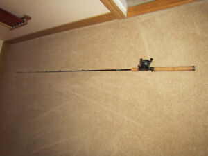 Casting Rod and Reel