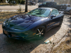 1998 firebird ls1  trans am running as is