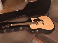 12 String Takamine with case