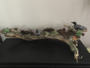 N.S. DRIFTWOOD DISPLAYS
