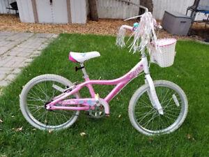 Girls Bike -  Giant brand $70 OBO