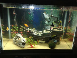 Aquarium 20 gallon a vendre