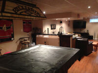 BASEMENT TRANSFORMATIONS IS WHAT I DO