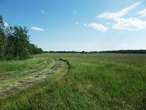 OPEN HAY LAND - 12 MINUTES FROM SHERWOOD PARK