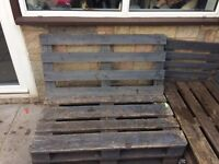 Pallets currently used as garden furniture free to collector