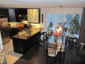 2bd modern furnished condo Nun's island, private entrance