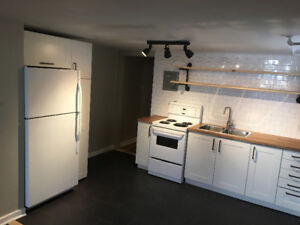 January 1- fully renovated South End near Dal