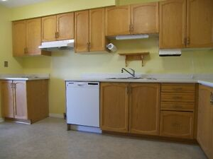Spacious & Bright Waterloo Apartment! Pool & Utilities Included! Kitchener / Waterloo Kitchener Area image 5