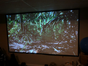 "120"" velcro attavhed projector screen"