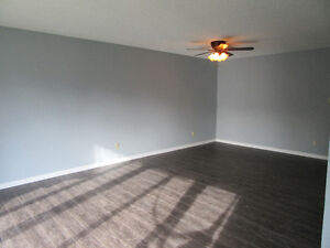 Newly renovated, Amazing location, Includes Basement Suite