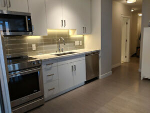 $1950- 2 br/2 bath + Den Delta Rise Apartment for Rent