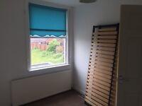 2 X bed duplex flat