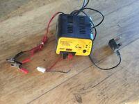 Pro peak,delta peak fast charger