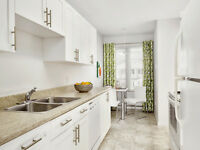 Mature Adults-Open Concept with two Patios NEWLY RENOVATED!!!