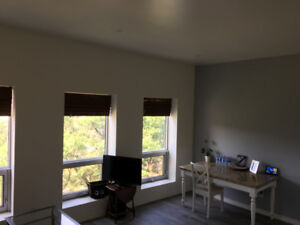 Upscale yet Affordable 1 Bedroom on Transit Route