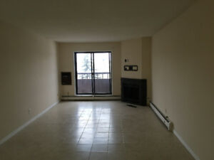 2 Bedroom Lakeview Condo