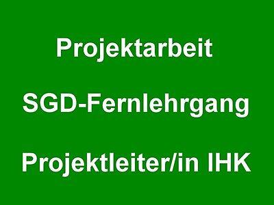 Projektarbeit zum Projektmanagement / Projektleiter IHK SGD HAF ILS