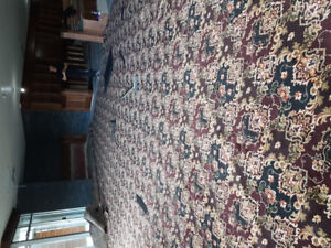 British pub style carpet new 13ft x 34ft with a underpad