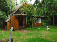 Cabin, 1 1/3 acre private lot