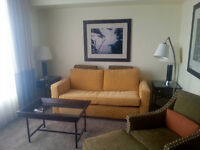 Furnished Condo for Lease in Financial District