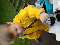 Beaconsfield Discovery Daycare