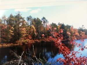 Waterfront Building Lot Right In HRM