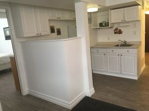 Bright Newly Renovated Basement Suite