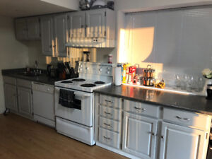 $1100 / 1br - Large 1 Bedroom Basement Suite (Maple Ridge)