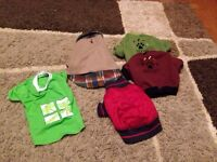 Assorted size s dog clothes