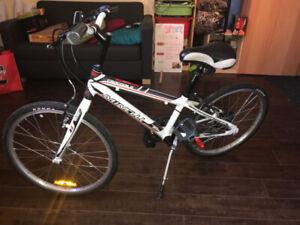 Vélo Minelli - 199$