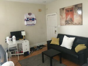 Sublease apartment for rent McGill ghetto May 1 - Sept 1