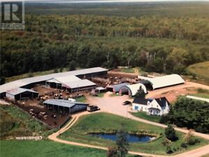 Farm with 3 bd home with many updates, garage, 2 lrg silos