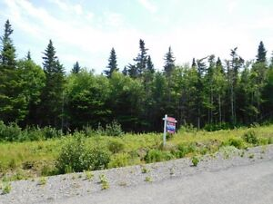 KENMORE TRAIL (Lot 10-2), WEST QUACO (WATER VIEW)