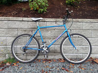 Vintage Nishiki Colorado ( EXTRA LARGE ADULT BIKE )
