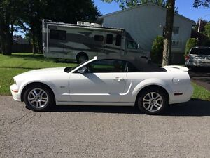 2005 Ford Mustang Cabriolet