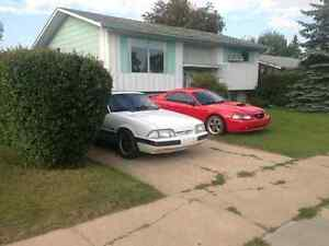 Looking for foxbody mustang