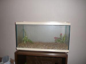 28 Gallon Fish Tank