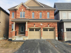 Brand new 4 Bedrooms & 2.5 Washrooms detached house for lease