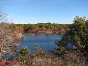 Hunting, Fishing & Recreational Land, Three Private Lakes