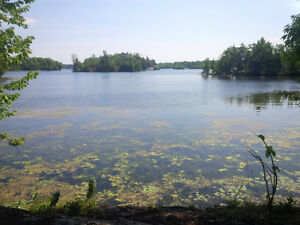 Level and clear 2.5 acre lot - Carrying Place Rd, Cranberry Lake Kingston Kingston Area image 5