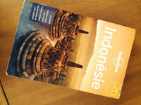 Indonésie Guide Lonely Planet