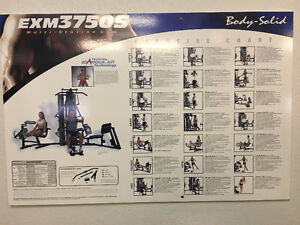 Body Solid Universal Gym,  Commercial Unit  Model # EXM3750S Kingston Kingston Area image 3