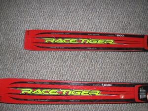 Racing skis - Giant Slalom (GS) racing skis
